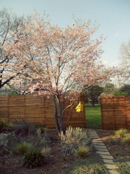 mid century modern fence