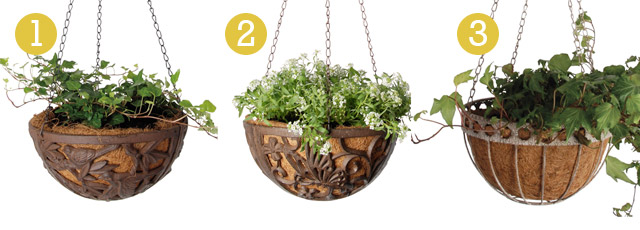 hanging baskets online