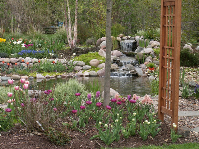 create a water stream in your backyard