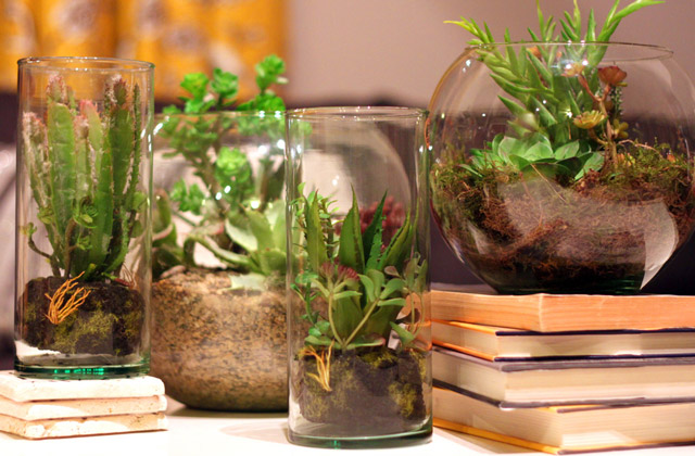 Green All Year Faux Terrariums Willard And May Outdoor