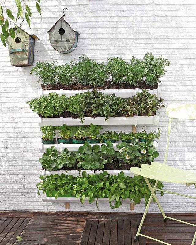 vertical-garden5